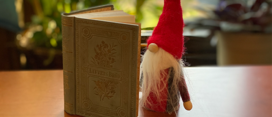 Gnome reading a book